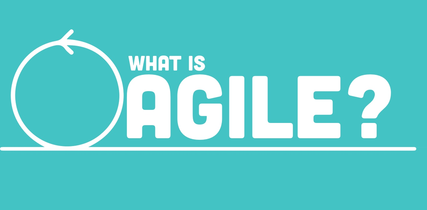 So what's this agile thing all about?